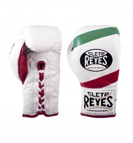 Cleto Reyes Safetec Boxing Gloves - Mexican Flag