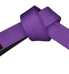 Fuji BJJ Purple Belt - Adult