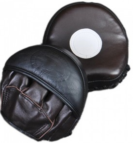Booster Thai Mini Curved Focus Mitts