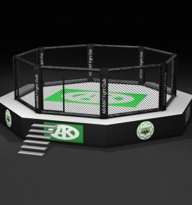 MMA Cage with Platform in Various Sizes