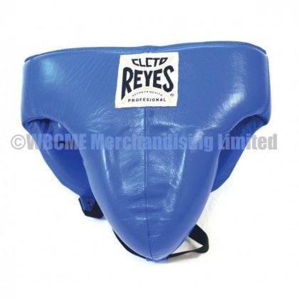 Cleto Reyes Traditional Foul Protector - Blue